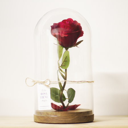 Montaje Cristal Rosa - Double Project