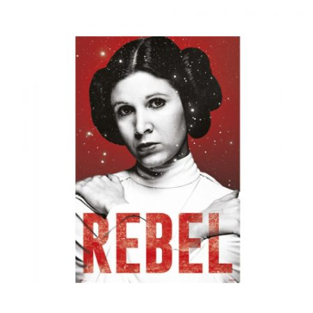 Poster Star Wars Leia Rebel - Double Project
