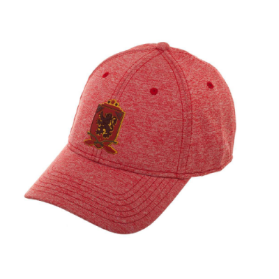 Harry Potter Gorra Béisbol Gryffindor | Double Project