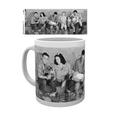 Friends Taza Friends Girder | Double Project