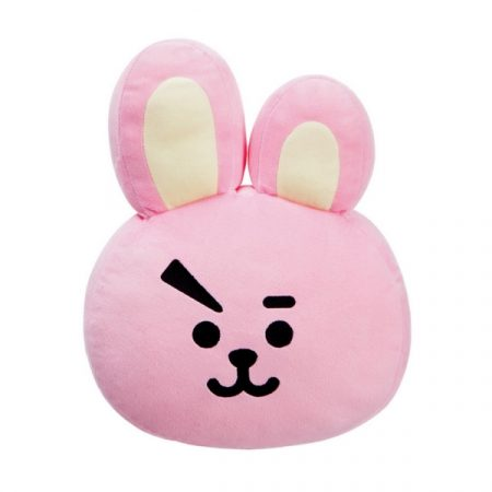 BT21 Cojin Cooky | Double Project