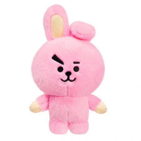 BT21 Peluche Cooky | Double Project